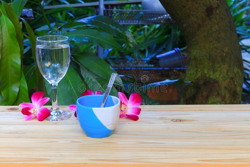 Filiżanka, wodny szkło z kwiatu storczykowy purpurowy storczykowy pięknym na drewnianej podłogowej desce, plamy tła zdroju pojęci zdjęcie royalty free
