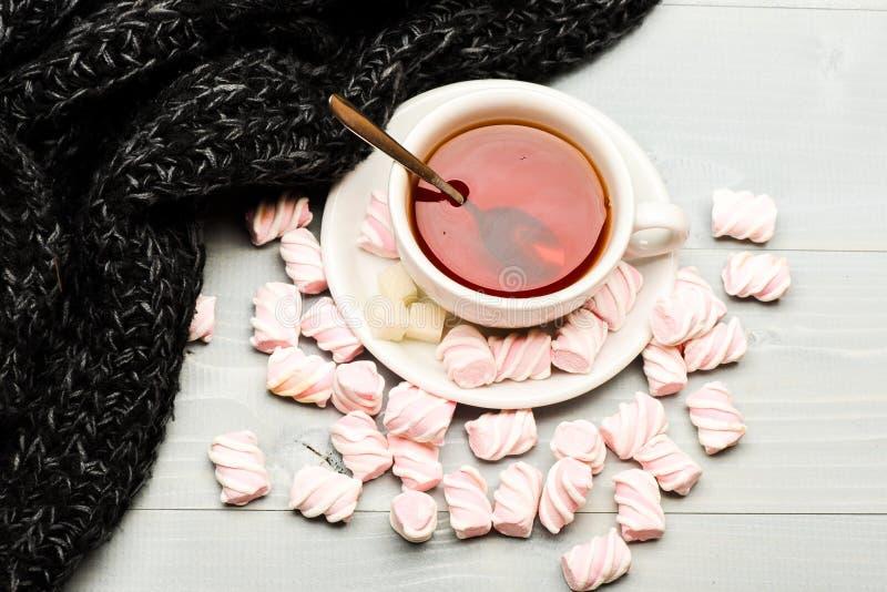 Filiżanka z gorącą czarną herbatą i marshmallows Coziness pojęcie Kubek i cukierki blisko wygodnego trykotowego szalika, odgórny  obrazy royalty free