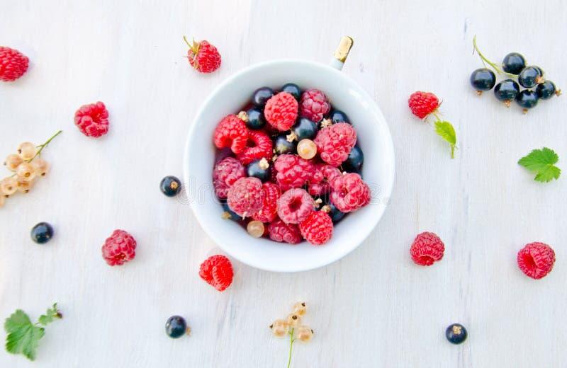 Filiżanka z jagodami i rząd jagody i liście na białym drewnianym tle porzeczkowe i malinowe, deseniowy tło zdjęcia royalty free