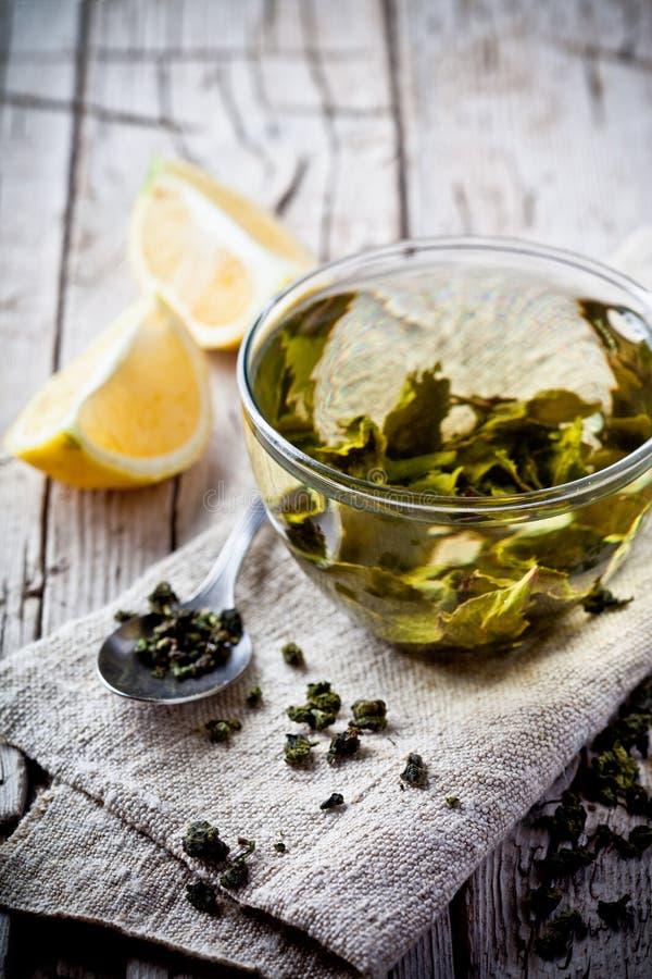 Filiżanka zielona herbata i cytryna fotografia royalty free