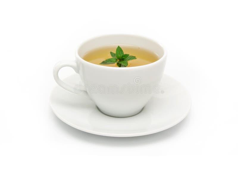 Filiżanka zielona herbata z mennicą, zakończenie, selekcyjna ostrość obraz royalty free