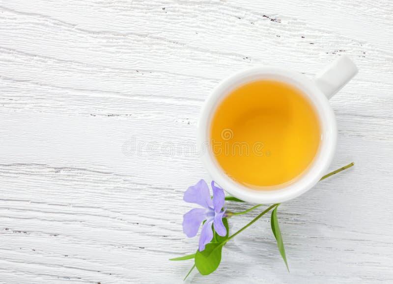 Filiżanka zielonej herbaty i wiosny kwiatu barwinek na świetle - różowy drewniany stół obrazy royalty free