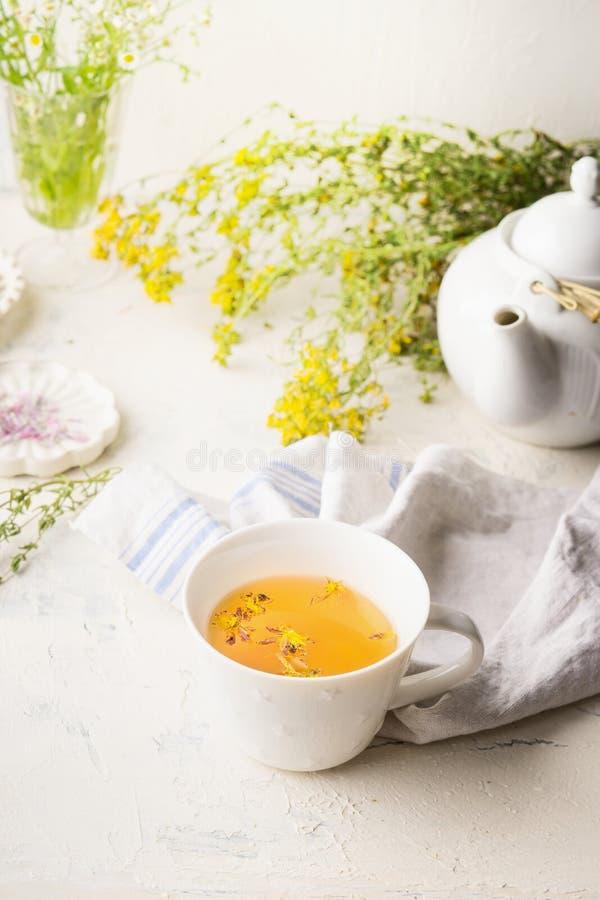 Filiżanka ziołowa herbata na bielu stole z teapot, świeżymi medycznymi ziele i kwiaty Podnosić odpornego i trawiennego system obraz royalty free