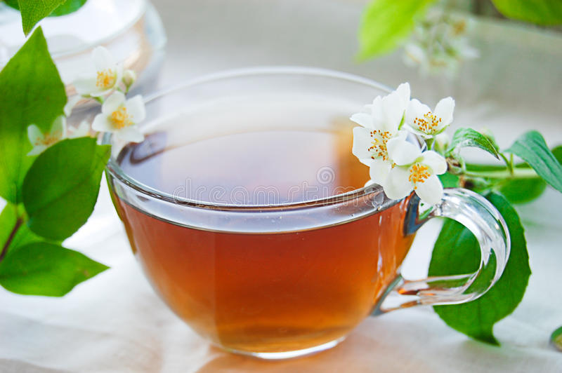 filiżanki herbata zielona jaśminowa fotografia stock