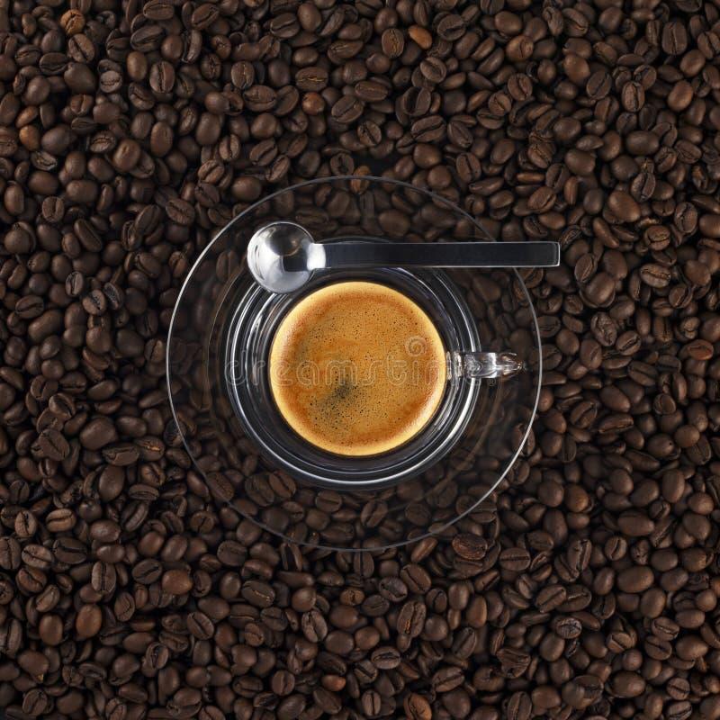 filiżanki kawy świeżego szklankę, zdjęcie royalty free