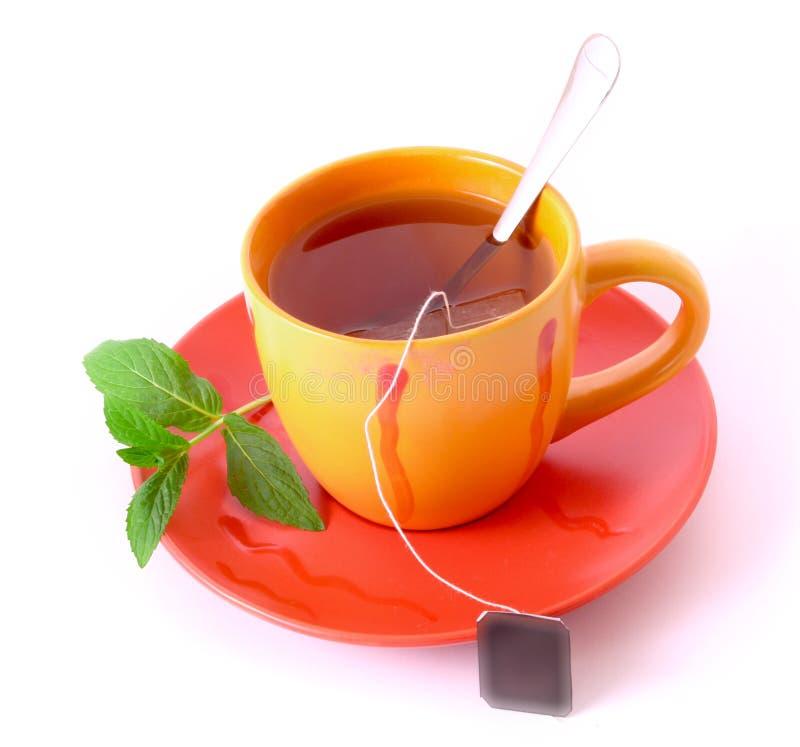 filiżanki zieleni mennicy spodeczka herbata fotografia stock