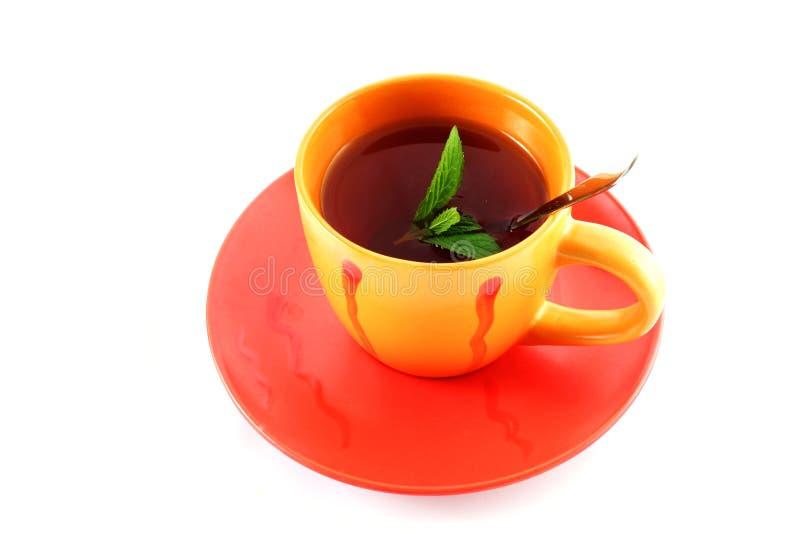 filiżanki zielona herbata zdjęcia stock