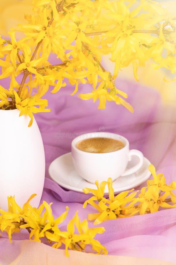Fili?anka kawy stojaki na textural jedwabniczej pielusze delikatny kolor waz? z kwiecenie ga??zkami forsycje s?o?ce promienie zdjęcia royalty free