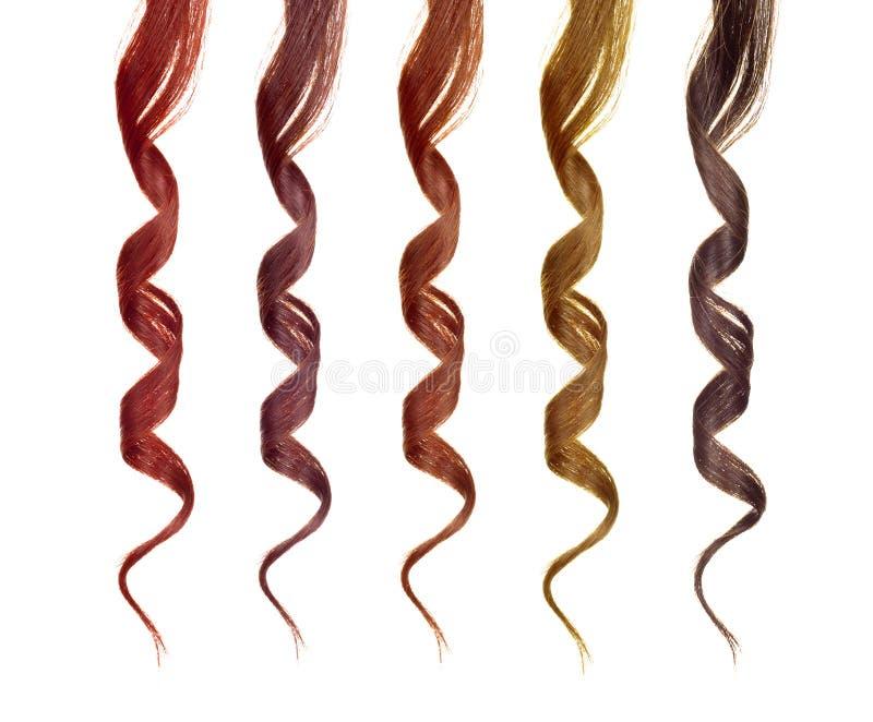 Fili colorati di capelli immagine stock