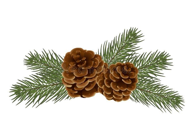 Filiais de árvore do Natal Abeto e cones realísticos, i imagem de stock