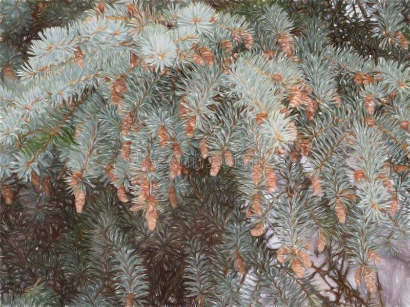 Filiais do abeto com cones foto de stock