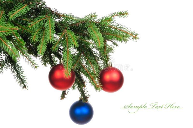 Filiais do pinho e esferas do Natal isoladas no whit imagem de stock royalty free