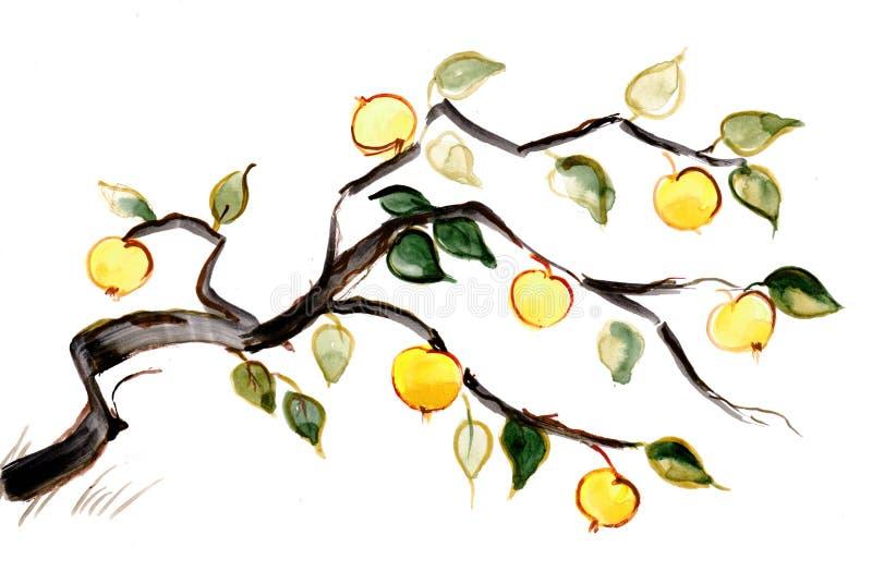 Filial av äppletreen royaltyfri illustrationer