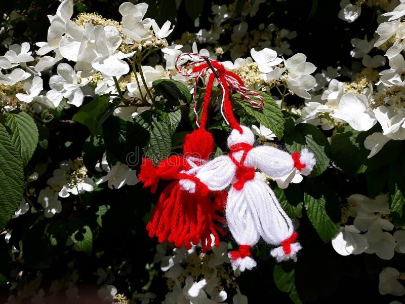 Filial av att blomstra det körsbärsröda trädet med en handgjorda Martisor royaltyfri foto