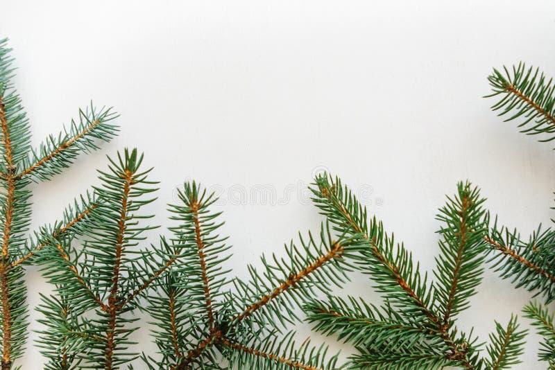 Filial av granen på en vit bakgrund Julbakgrund fotografering för bildbyråer