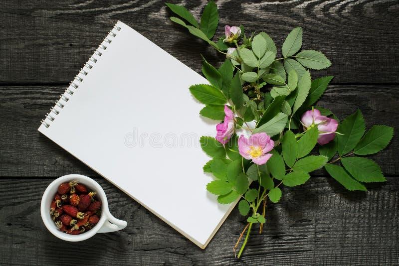 Filial av rosa höfter, den torkade briaren och anteckningsboken arkivfoto