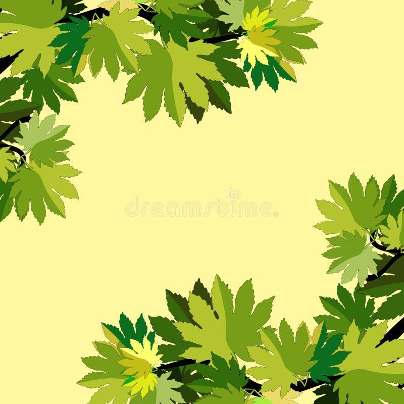 Filial av sidor för lönnträd också vektor för coreldrawillustration vektor illustrationer