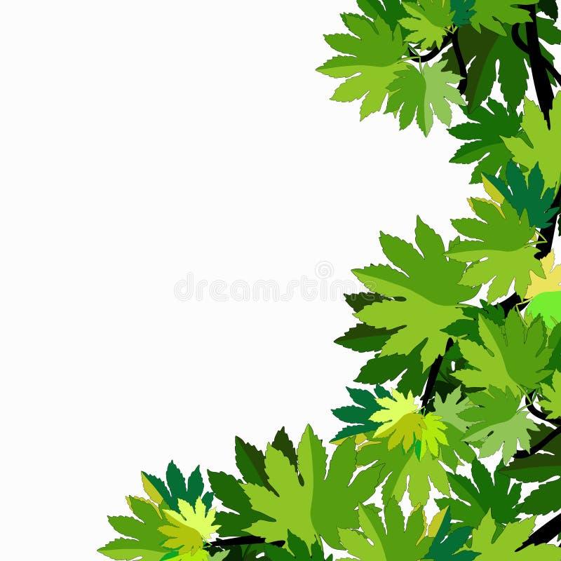 Filial av sidor för lönnträd också vektor för coreldrawillustration royaltyfri illustrationer