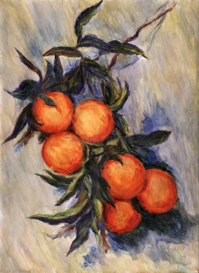 Filial da laranja ilustração stock