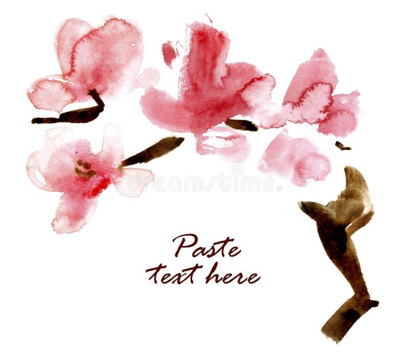 Filial de florescência da aguarela da cereja. ilustração do vetor