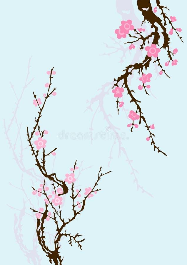 Filial de Sakura com flores ilustração stock