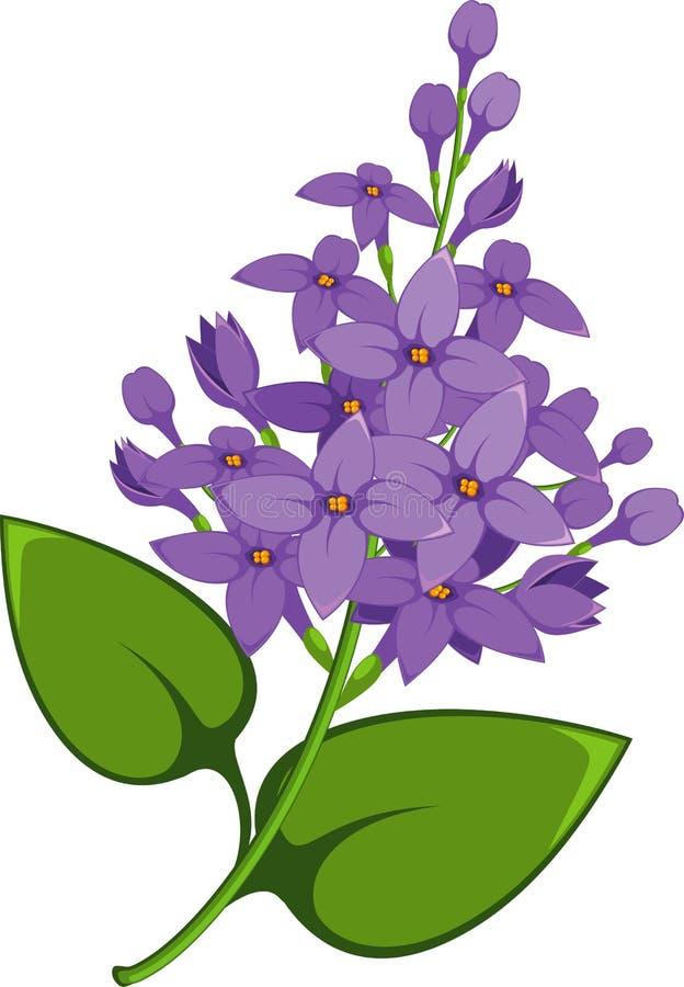 Filial do Lilac ilustração do vetor