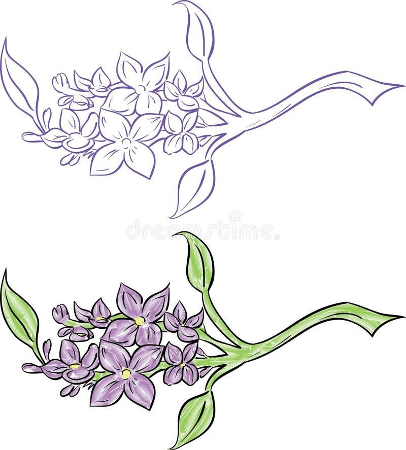 Filial do Lilac ilustração stock