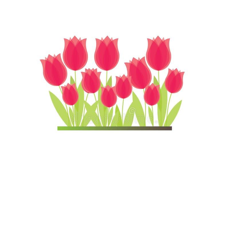 Filial do tulip vermelho. ilustração royalty free