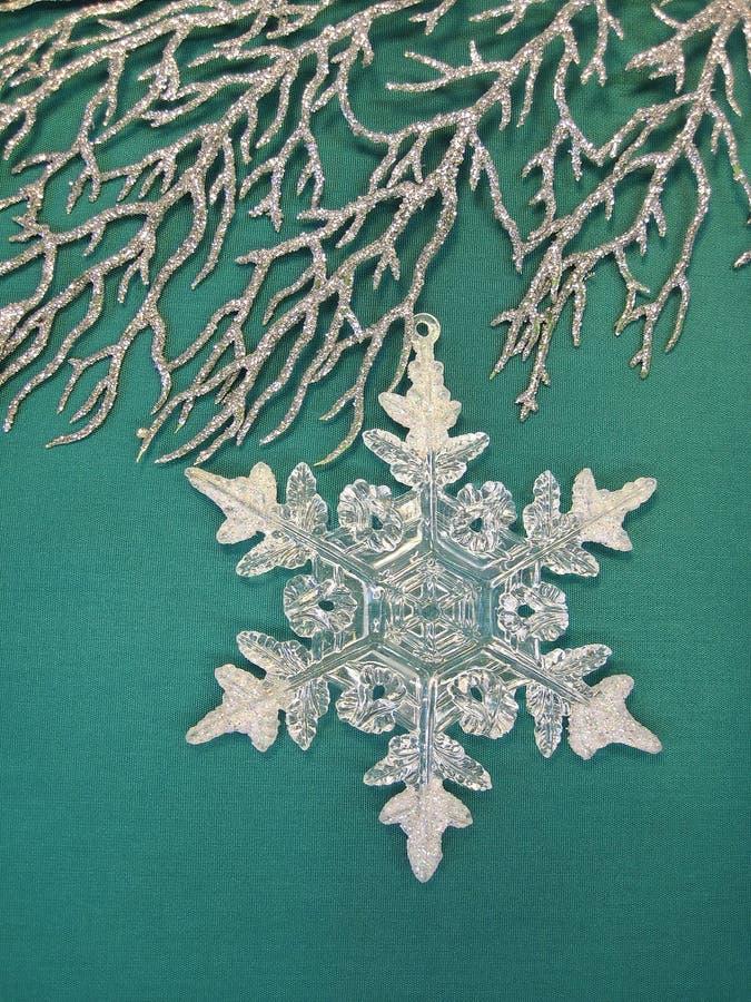 Filial e floco de neve de prata imagens de stock