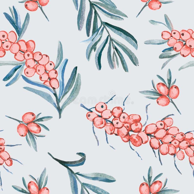 Filial för havsbuckthorn med mogna bär, bär och sidor, palett för pastellfärgade färger, sömlös modelldesign på mjuk grå backgrou vektor illustrationer