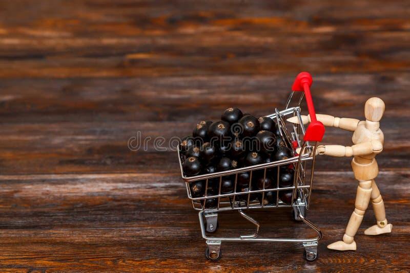 Filial för svart vinbär i mini- shoppingvagn sund begreppsmat fotografering för bildbyråer