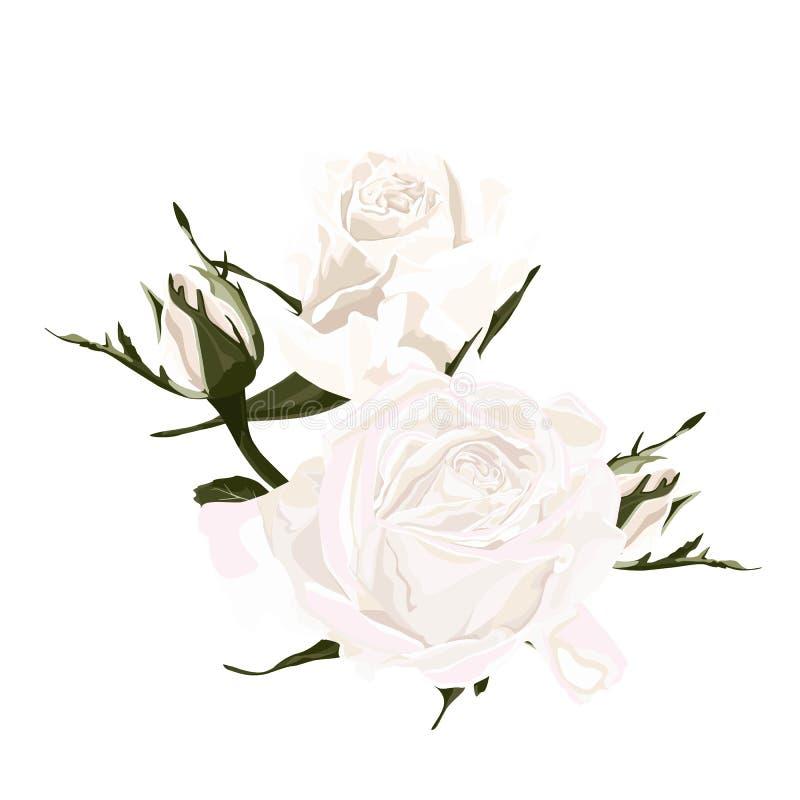 Filial floral Rosa e flor em botão brancas Conceito do casamento com flores O cartaz floral, convida ilustração stock