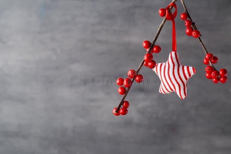 Filial med röda bär, juldekor arkivbilder