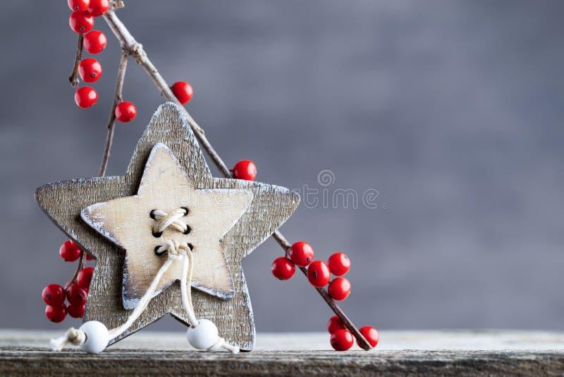 Filial med röda bär, juldekor royaltyfri bild