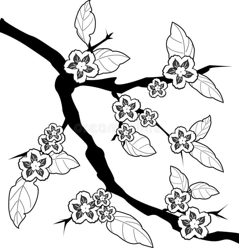 filial sakura royaltyfri illustrationer