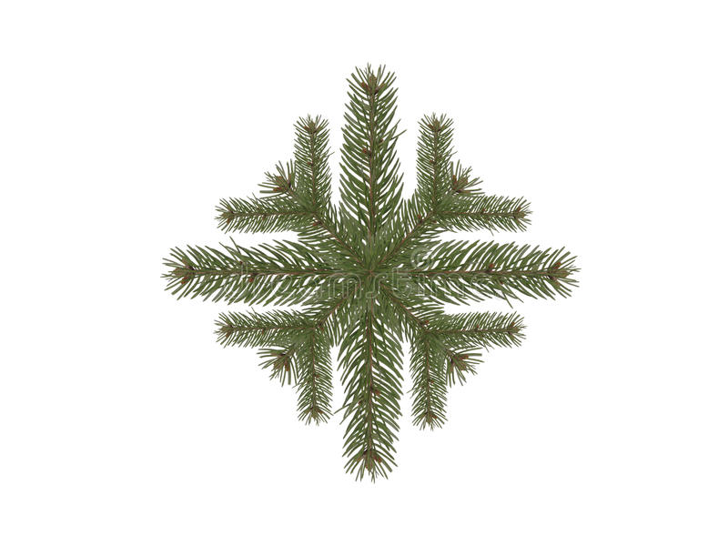 Filial spruce do floco de neve foto de stock