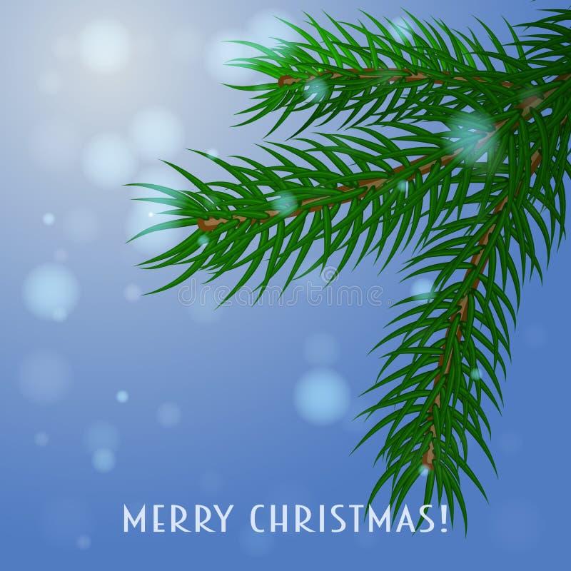filiale Cartolina di Natale, vettore Un ramo dell'abete rosso su un fondo blu illustrazione vettoriale