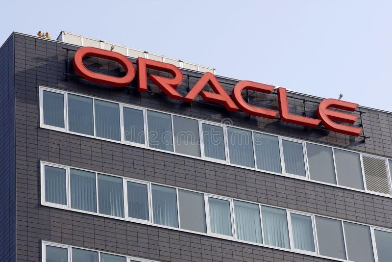Filiale del Oracle fotografia stock