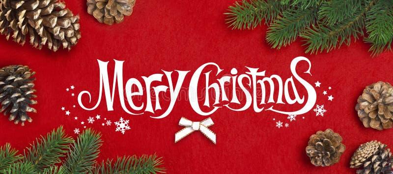 Filiale dell'albero di Natale immagine stock libera da diritti