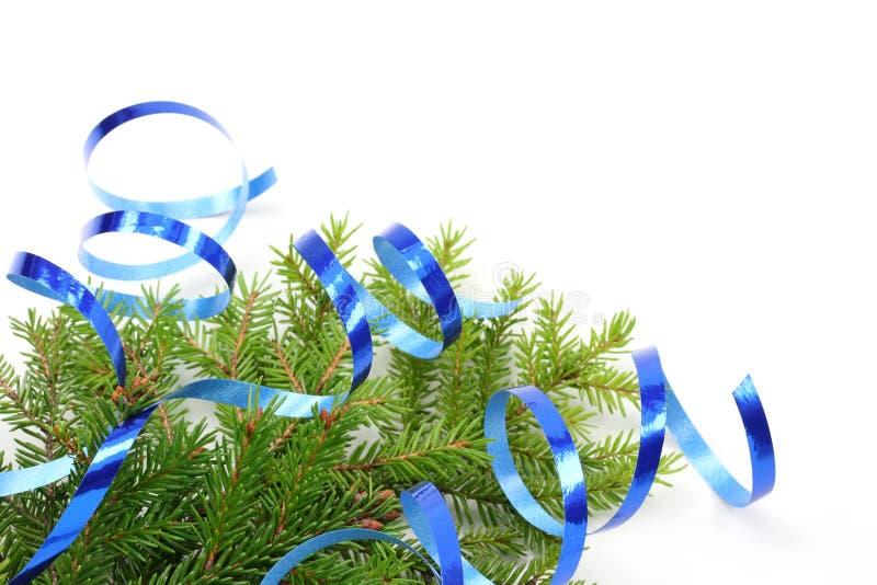 Filiale dell'albero di Natale e nastro blu fotografia stock