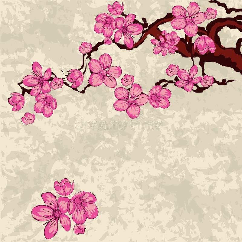 Filiale di Sakura royalty illustrazione gratis