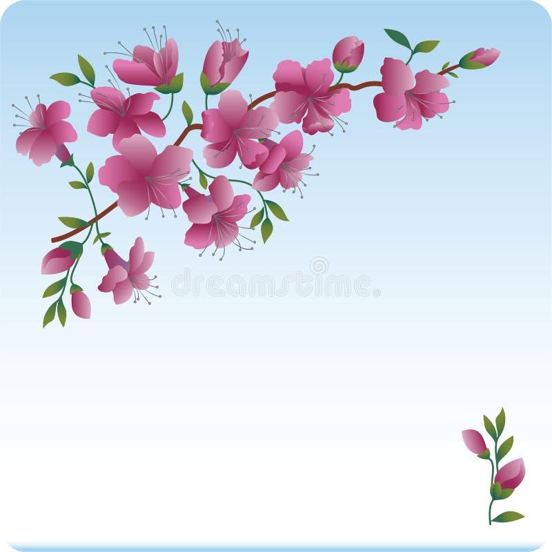 Filiale sbocciante. Color scarlatto dei fiori. illustrazione vettoriale