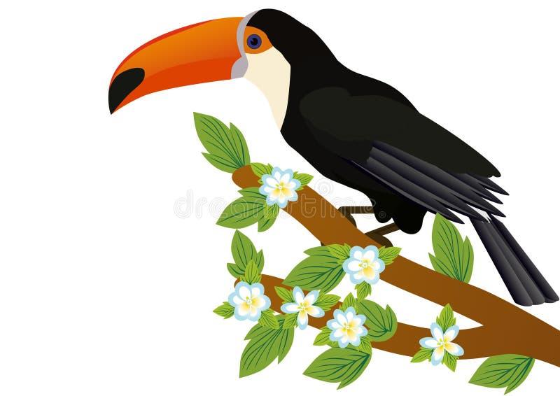 filialen blommar toucan vektor illustrationer
