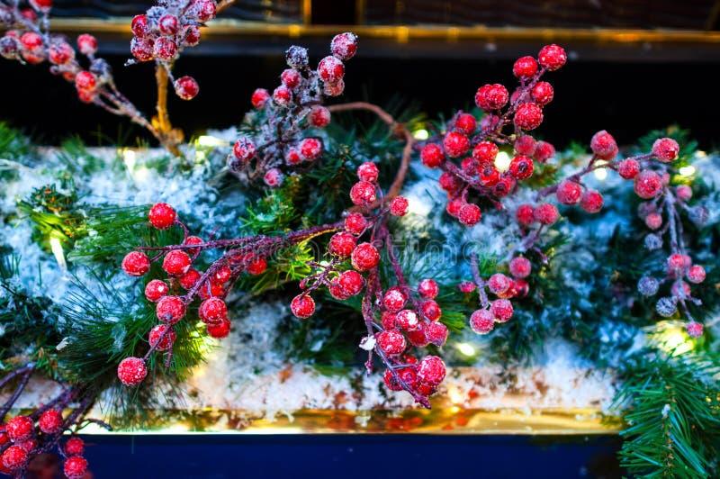 Filialer för Cristmas vintergarnering av granen och bär i snön arkivbilder