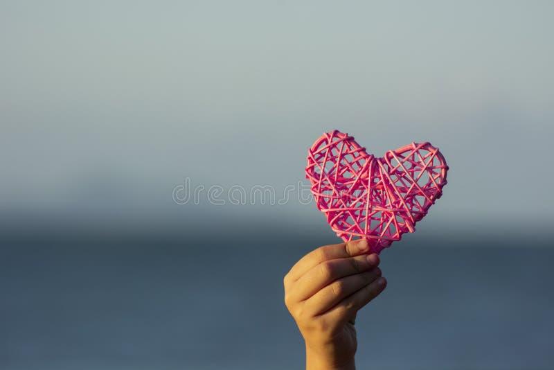 Filialerna formas som en förälskelsehjärta med handen som är hållande på naturlig bakgrund arkivfoton