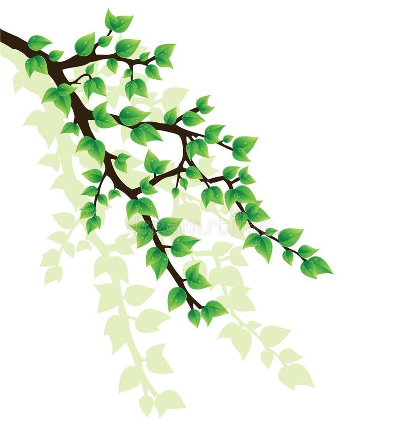filialtree royaltyfri illustrationer