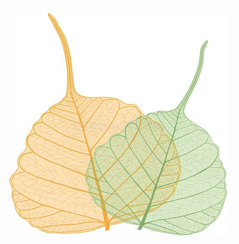 Filigree leaves, vector. Orange and green filigree leaf vector illustration