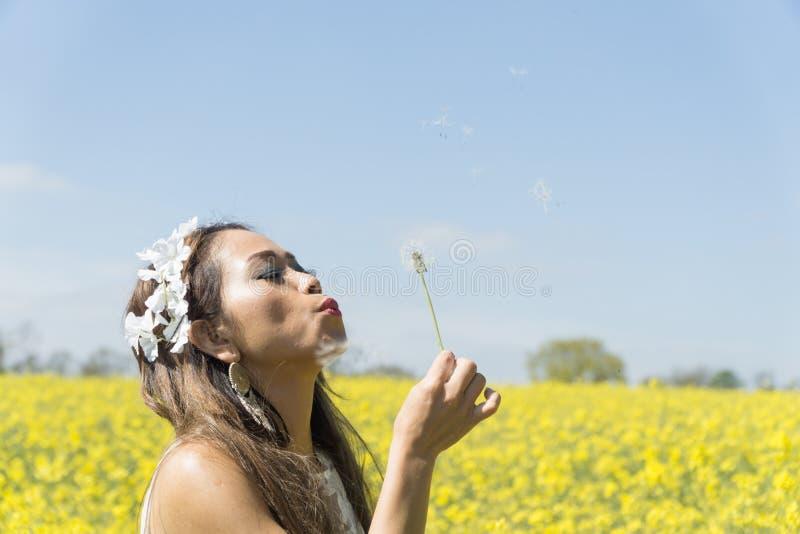 Filipińczyka model w rapeseed polu w wiośnie fotografia royalty free