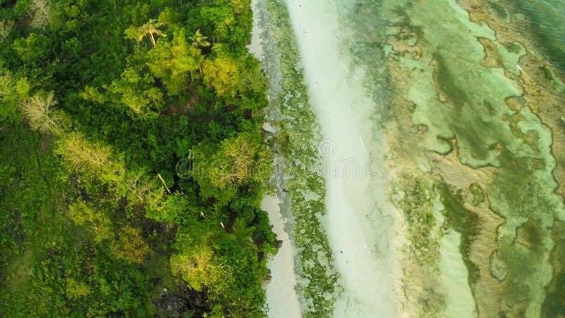 Filipińska wioska przy brzegową Bohol wyspą Anda obrazy stock