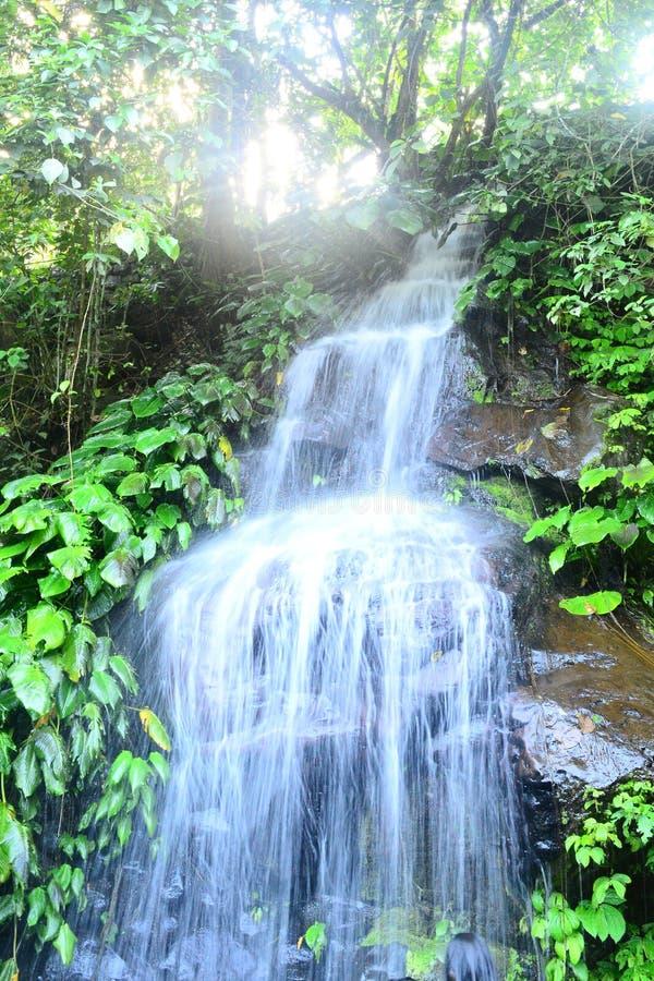 Download Filipińskie siklawy zdjęcie stock. Obraz złożonej z fotografia - 106908100